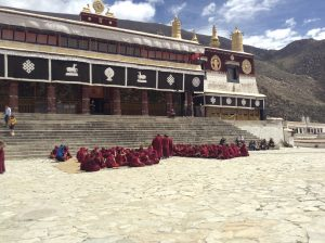The debating monks at Sera Monastery are famous all over the world