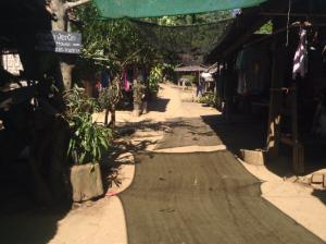 real long neck karen village
