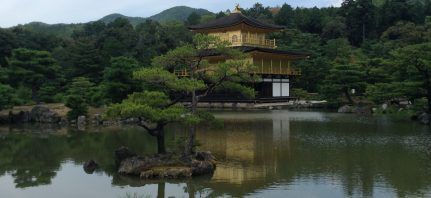 Magical bamboos and ancient shrines in Japan