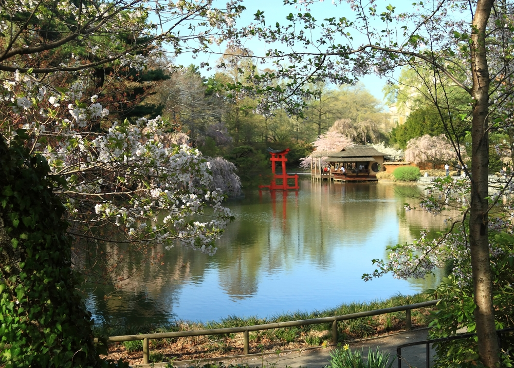 Brooklyn Botanic Gardens, fun bus long island tour blog