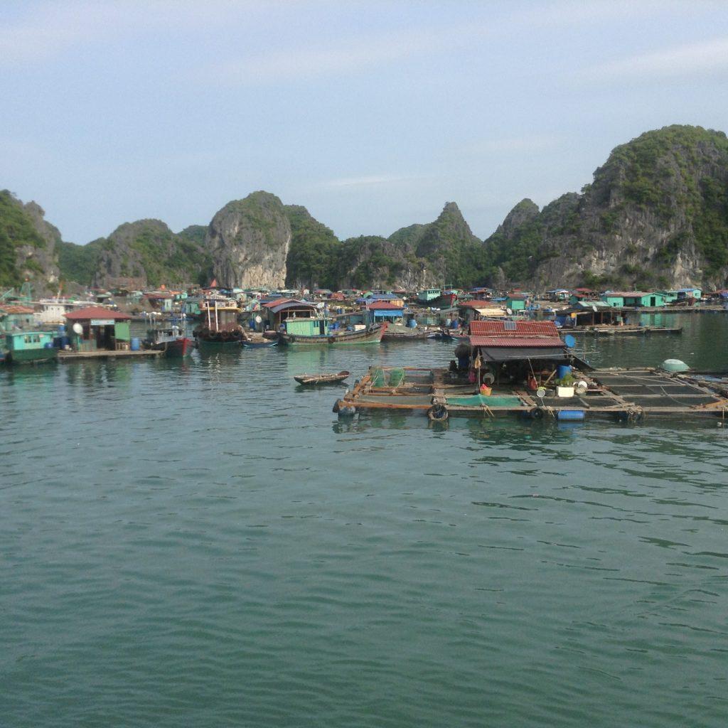 Vietnam, black tefl teachers