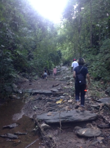 karen long neck hill tribe jungle walk