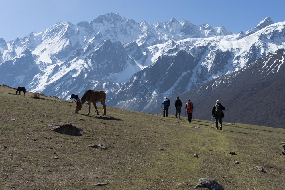 short treks in nepal, Langtang Trek