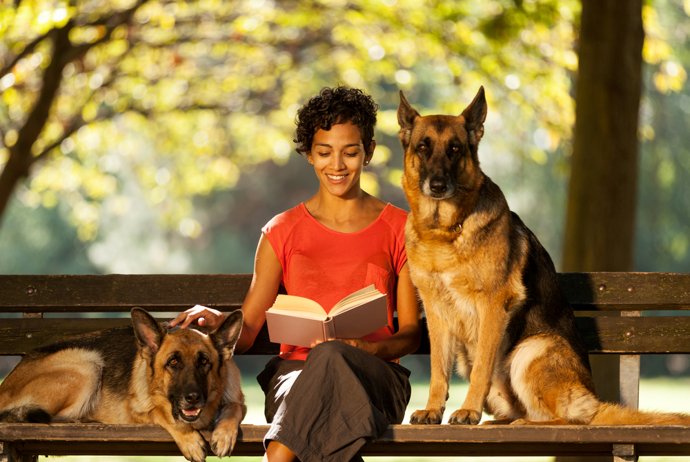 pet sitter, dog sitting, how to make money while traveling the world